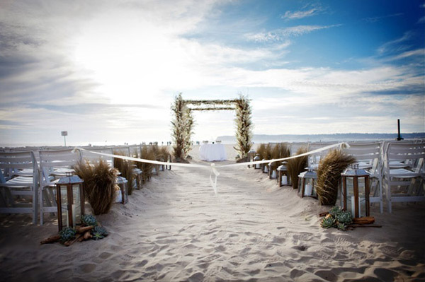 Amanda hector wedding
